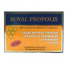ROYAL PROPOLIS 2 btes fortifiant - NUTRITION CONCEPT