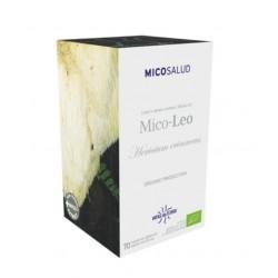 Mico-Léo - Héricium erinaceus - MICOSALUD