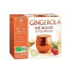 Gingerola Thé boost à l'Acérola - Thés de la Pagode
